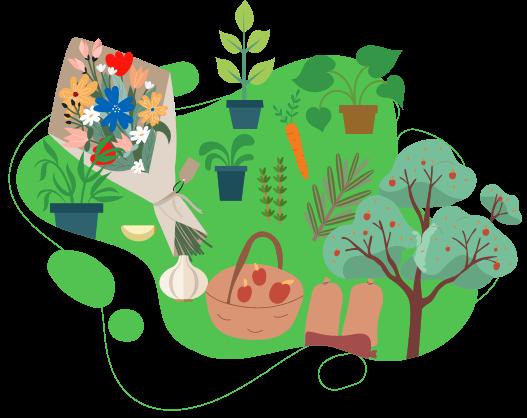 Zahradnictví HAVLINA | Pěstování, prodej květin, rostlin, stromů a keřů - Ostrava